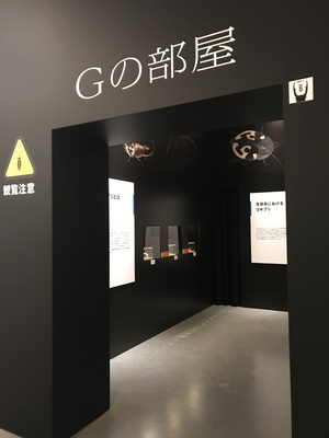 5昆虫展.jpg